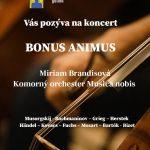 bonus-animus